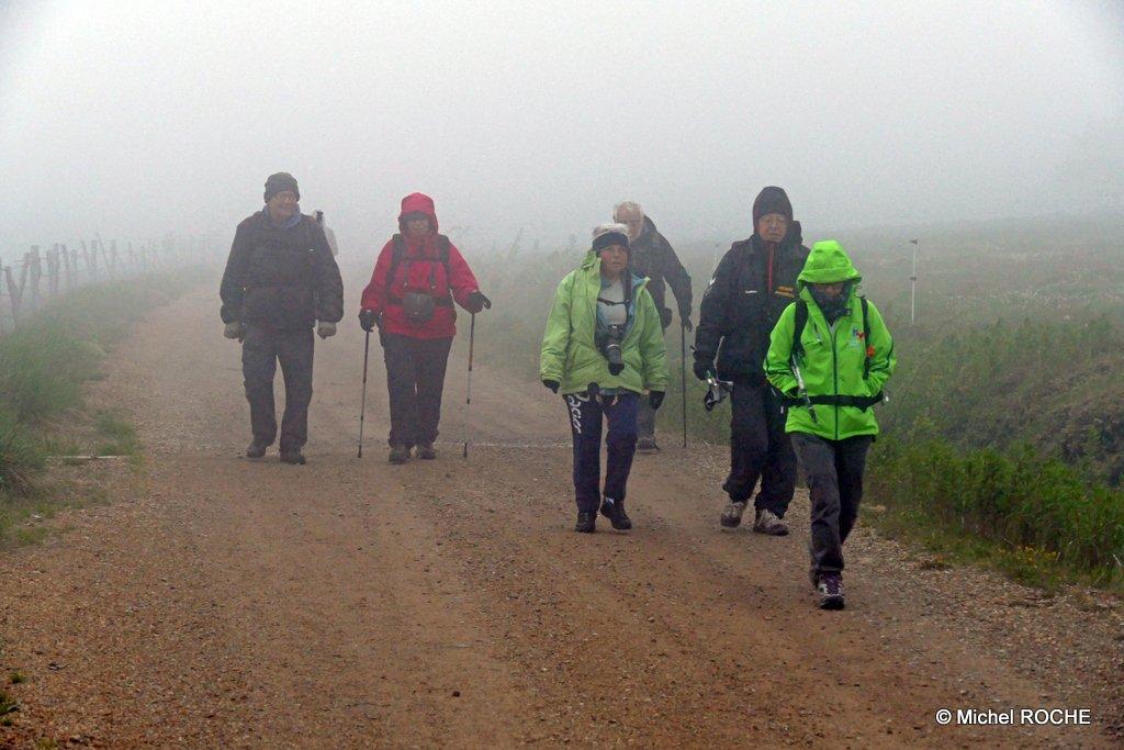 1-2016 06 19 RPT Mt Loz (15) PSE