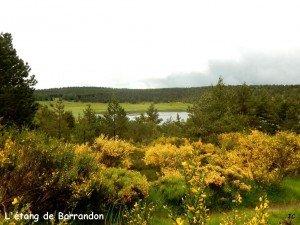 Arrivée sur l'étang de Barrandon