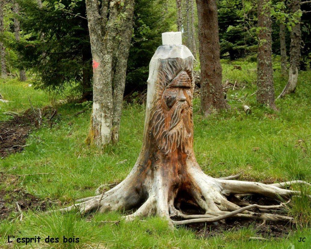 sculpure surprise. L'esprit des bois.