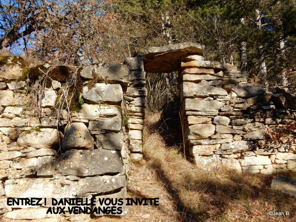 6-2017 02 06 RPT LES SALLELES - CHABANES - MONTREDON (30)